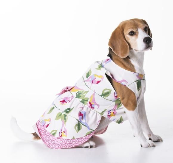 vestido-florence-jingles-tam-05-vestido-para-cachorro