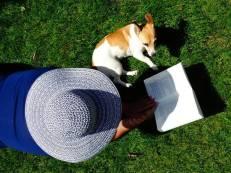 cachorro mulher jardim sol verão livro