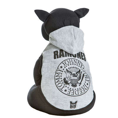 cachorro roupa