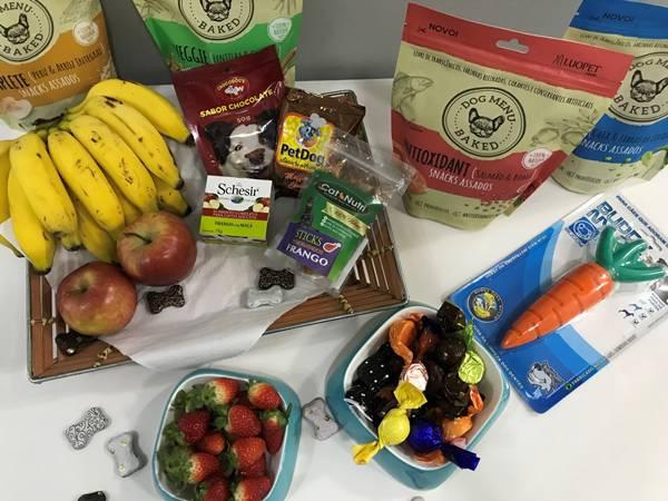 cao com alimentos pet saudaveis (6)