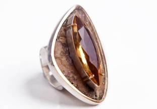 Silvia Blumberg_Anel em prata pó de madeira e ouro