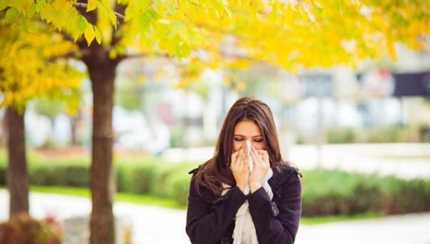 gripe espirro rinite
