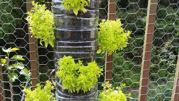 jardim vertival luis gopa pixabay