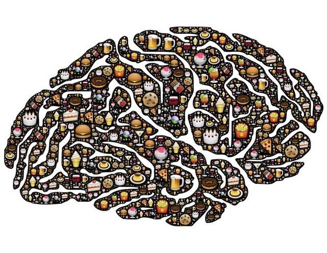cérebro alimentos junkie food pixabay