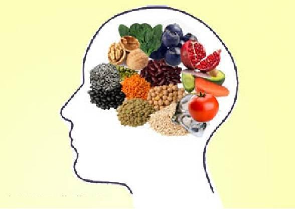 cerebro e comida