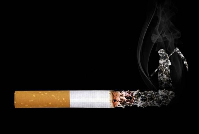 cigarro morte tabaco fumo pixabay