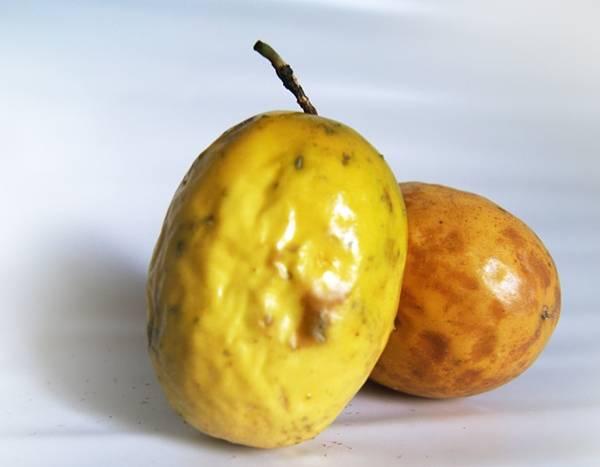 maracujá fruta oiluarb_ai pixabay