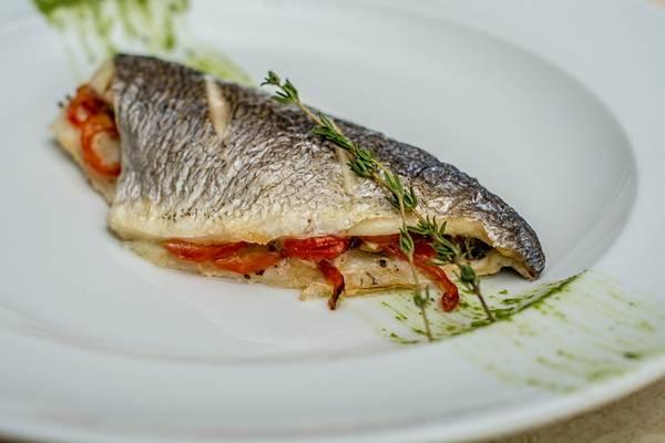 peixe robalo tarasov pixabay
