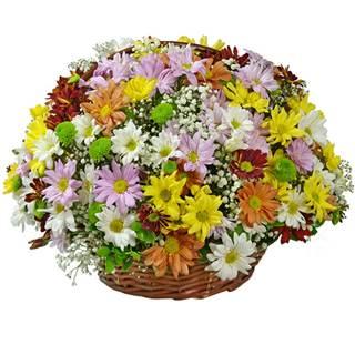 cesta surpresa flores