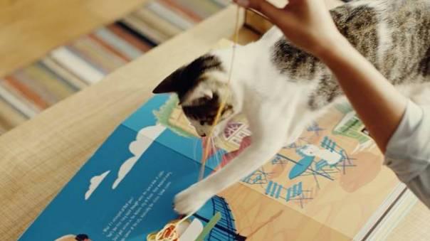 O Gato Mais Curioso do Mundo_1