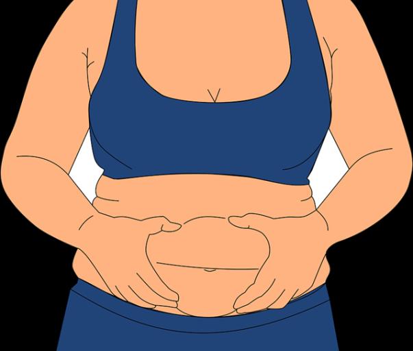 obesidade obesa gorda pixabay