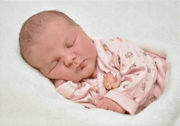 bebê recem nascido píxabay.jpg