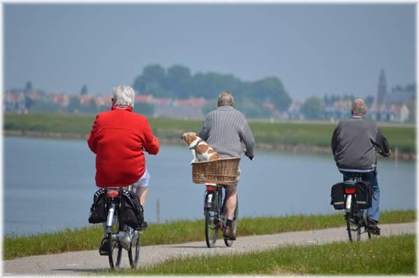 bicicleta idosos cachorro pexels