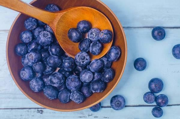 blueberry mirtilo pixabay
