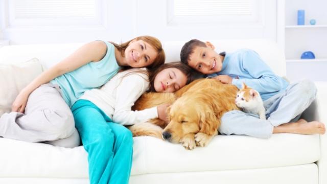 familia e pets.jpg