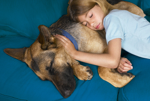 getty_rf_photo_of_girl_napping_with_dog