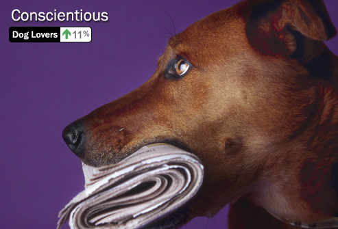 photolibrary_rm_photo_of_dog_holding_newspaper