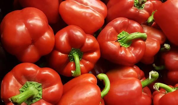 pimentao vermelho pixabay