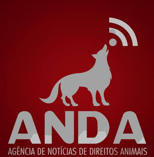 17-logo-ANDA.jpg