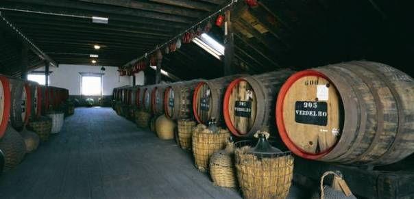 Caves - Vinho Madeira - Turismo da Madeira