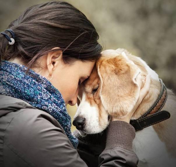 mulher com cachorro carinho.jpg