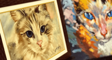 pintando gatos 3