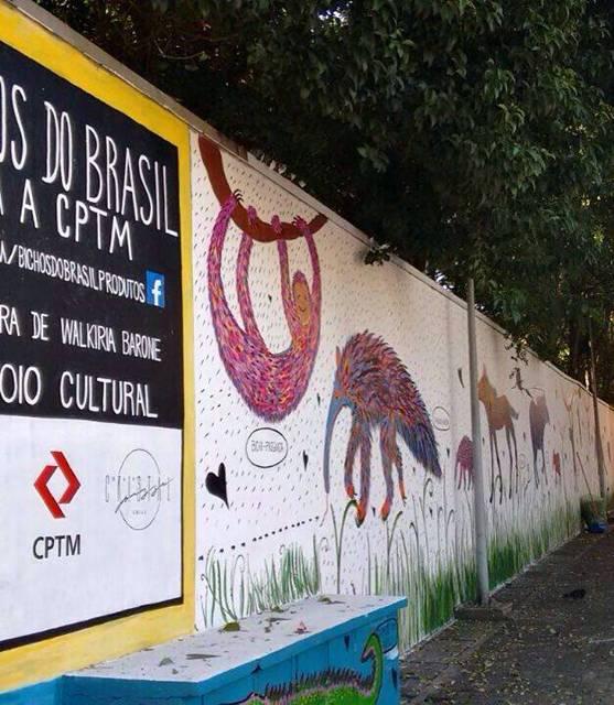 Bichos Brasil (11)