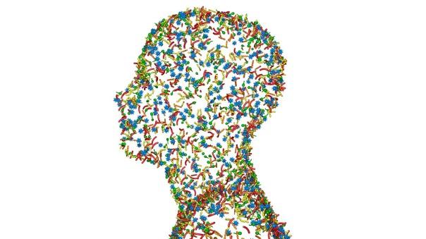 cerebro microbioma shape magazine