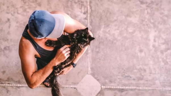 homem brincando com gato