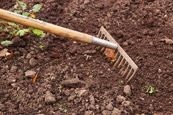 jardim terra arando terimakasih0 pixabay