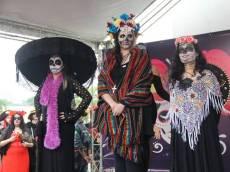 festival mexico