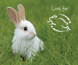 rabbit-leaping-bunny-logo.jpg