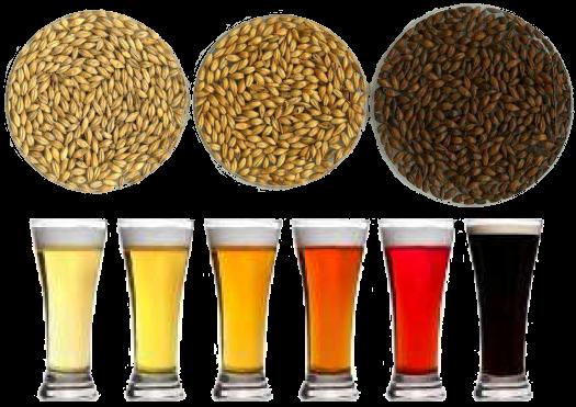 cervejas micro-malterie
