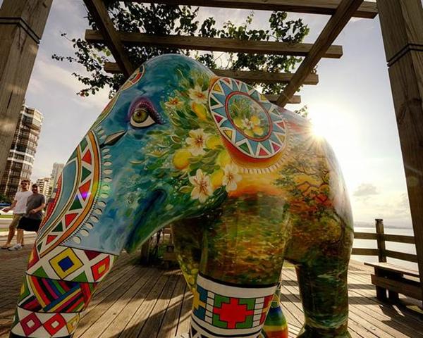 elefante suvinil 3