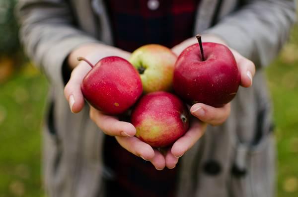 macas francesas maçãs francesas 3