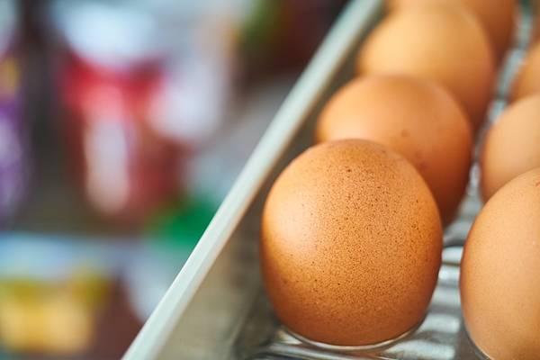 ovos geladeira