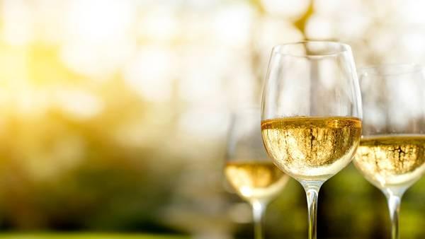 Verão_ Vinho branco
