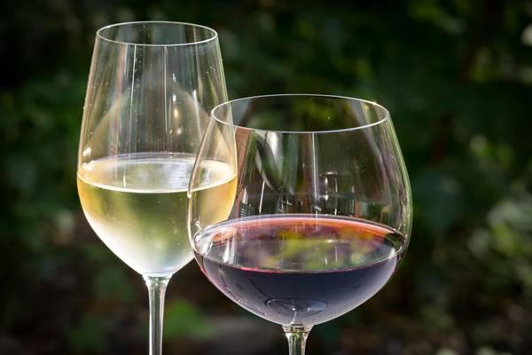 Verão_Vinhos branco e tinto