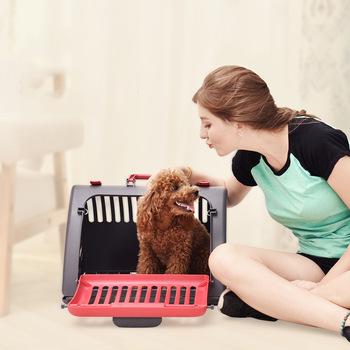 caixa de transporte cachorro.jpg
