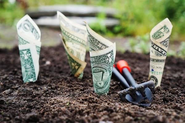 dinheiro poupança financas pixabay 33