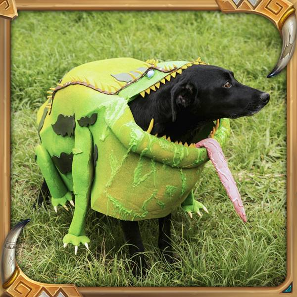 Frog_B_PetCosplay_Instag_1080x1080