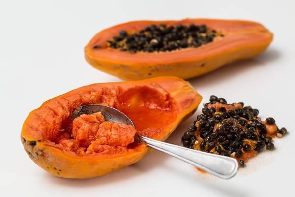 papaya mamao maduro semente pixabay