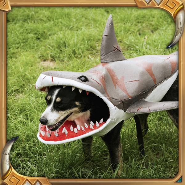 Shark_B_PetCosplay_Instag_1080x1080
