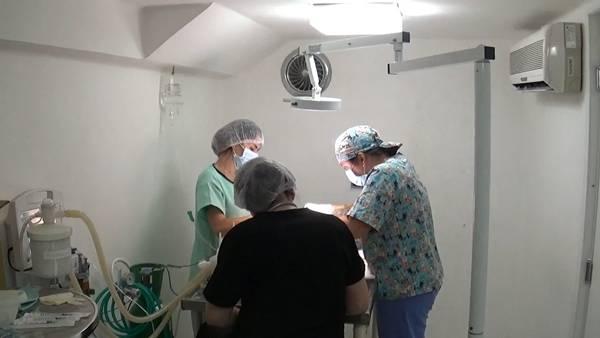 centro-veterinario-1