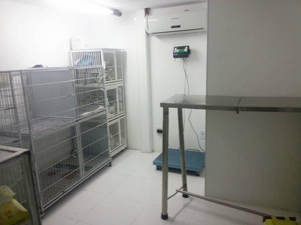 centro-veterinario-3
