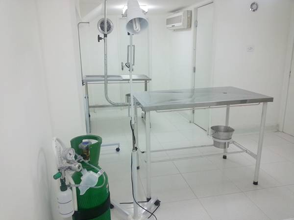 centro-veterinario-4