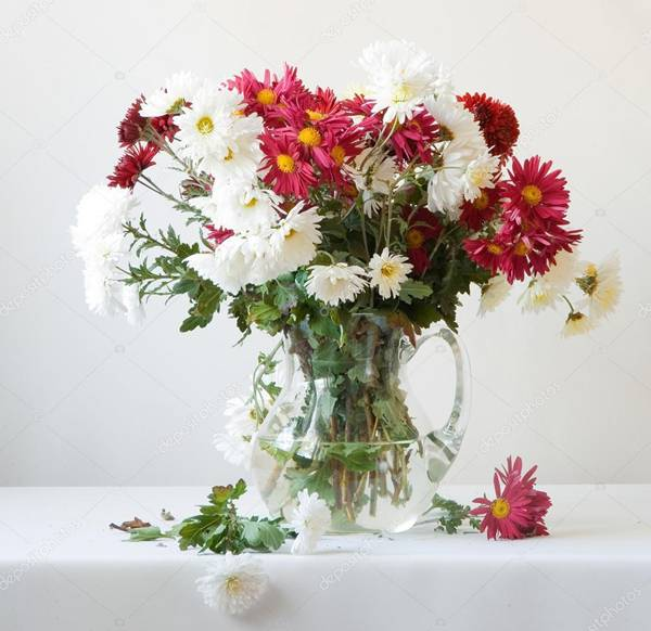 depositphotos_stock-photo-bouquet- crisantemos