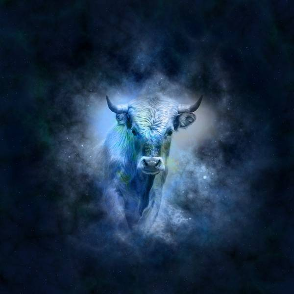 signos touro geralt pixabay