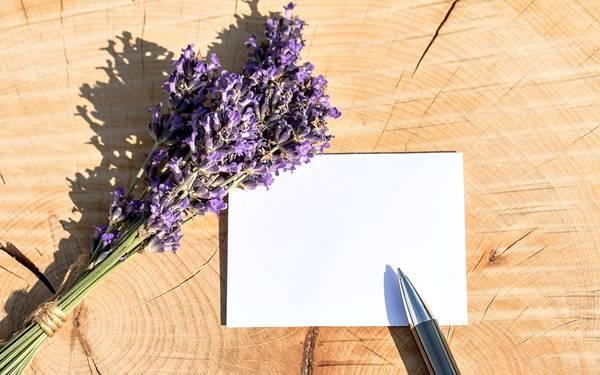 cartão de agradecimento.jpg