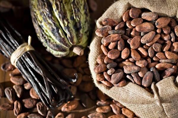 SHUTTERSTOCK_chocolate